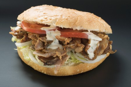 ner: D�ner kebab with onions, tomatoes and yoghurt sauce