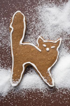 figurative: A gingerbread cat LANG_EVOIMAGES