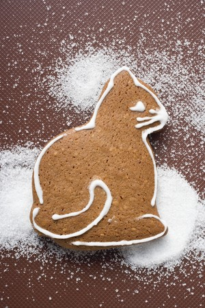 solo  christmas: A gingerbread cat LANG_EVOIMAGES