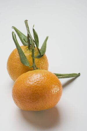 clementines: Two clementines with leaves