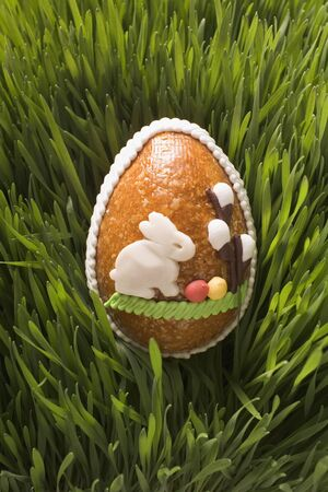 sweet grasses: Sweet Easter egg in grass LANG_EVOIMAGES