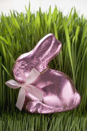 sweet grasses: Pink chocolate Easter Bunny in grass LANG_EVOIMAGES