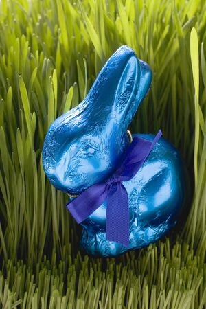 sweet grasses: Blue chocolate Easter Bunny in grass