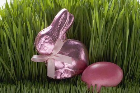 sweet grasses: Pink Easter Bunny and Easter egg in grass