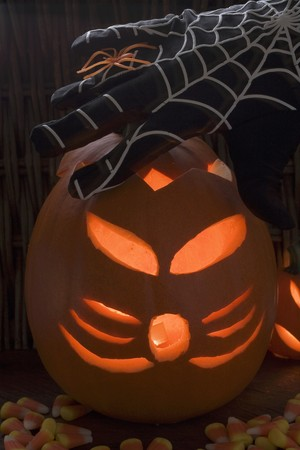 squash bug: Halloween decorations: pumpkin lantern, cobweb glove, spider