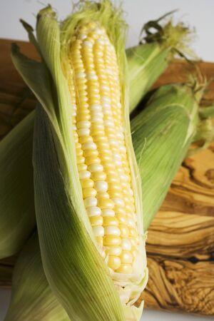 zea mays: Three corn cobs with husks LANG_EVOIMAGES