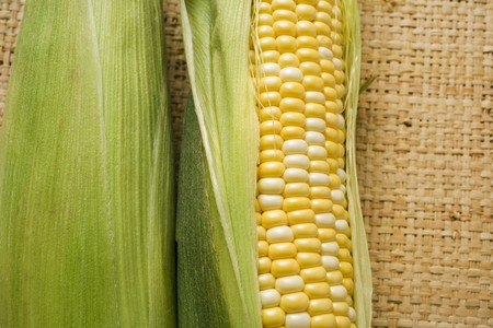 mealie: Two corn cobs with husks