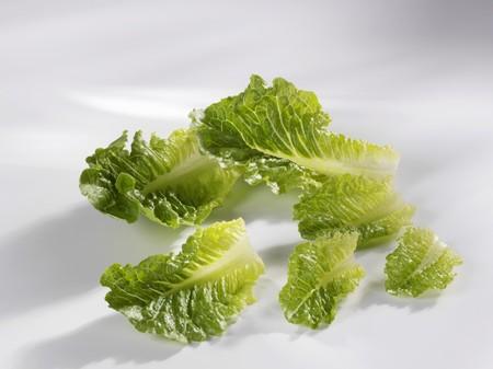 romaine: Romaine lettuce leaves