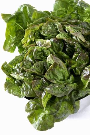 romaine: Romaine lettuce