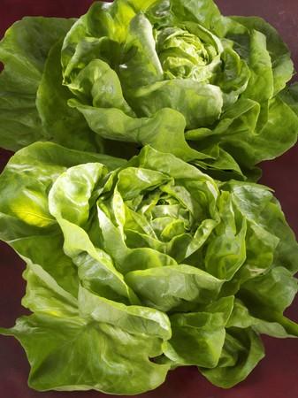 lettuces: Two lettuces