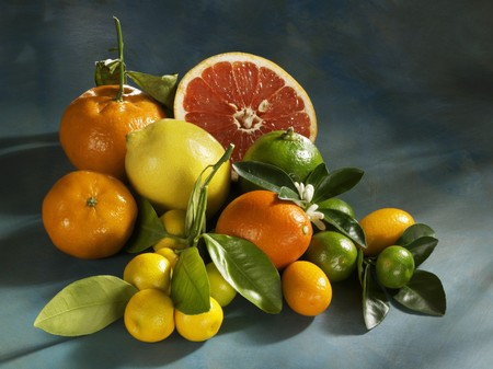 감귤류의 과일: 모듬 감귤류