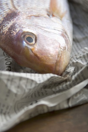 sea bream: Sea bream on newspaper