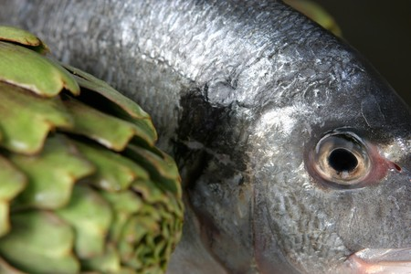 sea bream: A sea bream with artichoke LANG_EVOIMAGES
