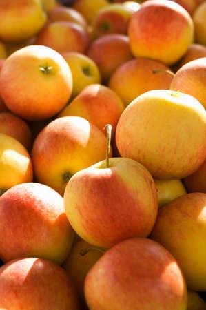 pip: Apples