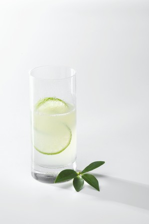 tall glass: Gin Fizz in tall glass with slices of lime LANG_EVOIMAGES