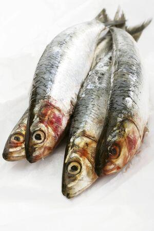 sardines: Four sardines