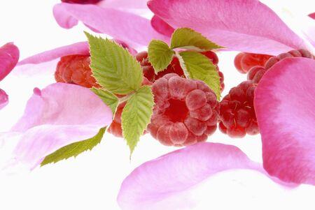 花びら: ラズベリーの葉と花の花弁