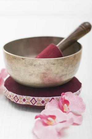 singing bowl: A singing bowl