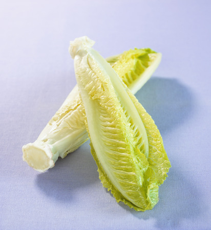 romaine: Two romaine lettuce hearts LANG_EVOIMAGES