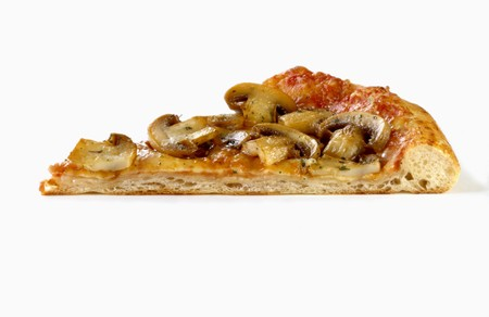 substantial: A piece of pizza with tomatoes, cheese and mushrooms LANG_EVOIMAGES