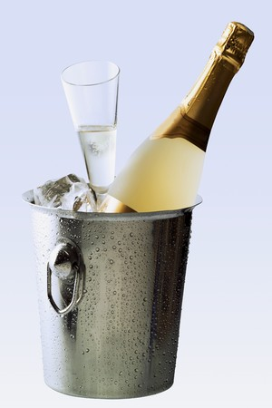 champers: Sparkling wine still life with cooler, bottle and glass LANG_EVOIMAGES