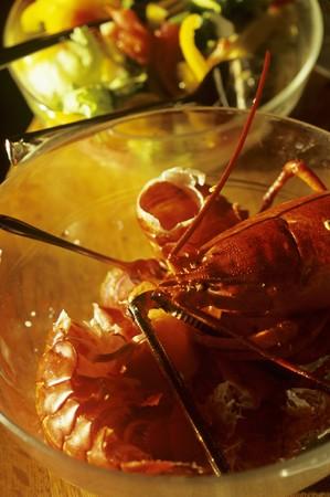 leftovers: Empty Lobster Shells in a Bowl LANG_EVOIMAGES