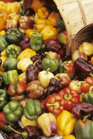 bell peppers: Large Variety of Bell Peppers LANG_EVOIMAGES