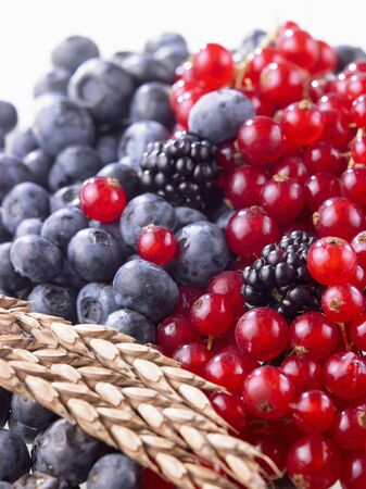 Mixed berries and ear of spelt wheat LANG_EVOIMAGES