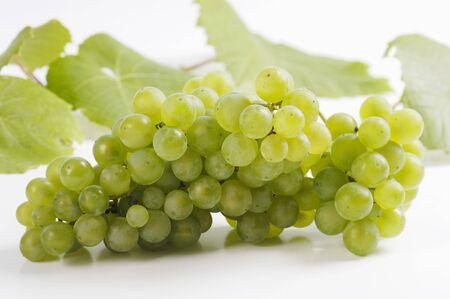 wijnbladeren: Druiven en wijnbladeren op witte achtergrond