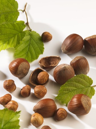 shelled: Shelled and unshelled hazelnuts