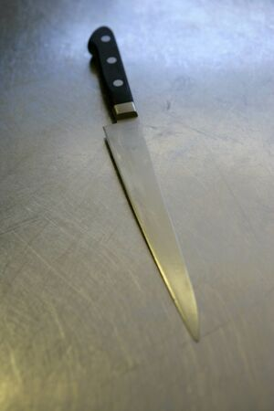 stainless steel kitchen: A stainless steel kitchen knife