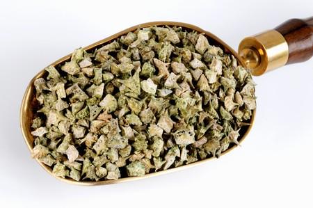 puncture: Dried puncture vine fruits (Tribulus terrestris) LANG_EVOIMAGES