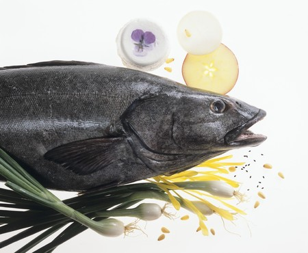 glass topped: Black sea bass, various ingredients on sheet of glass