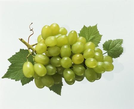 wijnbladeren: Groene druiven met wijnbladeren