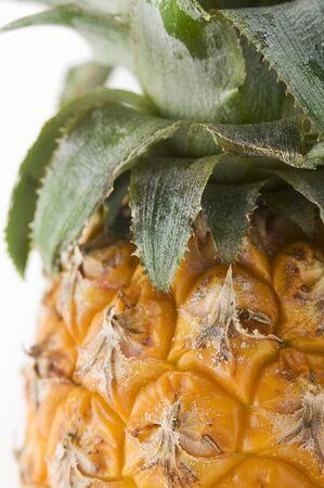 aaa: Pineapple (close-up)