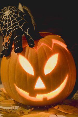 squash bug: Hand in cobweb glove holding pumpkin lantern