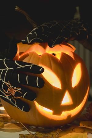 squash bug: Hands in cobweb gloves holding pumpkin lantern