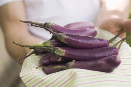 somebody: Hands holding fresh aubergines on tea towel LANG_EVOIMAGES