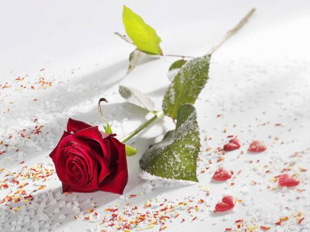 jimmies: Red rose surrounded by sugar, sprinkles and hearts LANG_EVOIMAGES