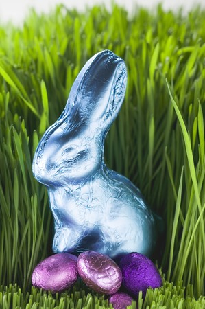 oeufs en chocolat: Lapin de P�ques et oeufs en chocolat dans l'herbe LANG_EVOIMAGES