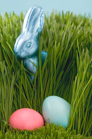 sweet grasses: Easter Bunny and coloured eggs in grass LANG_EVOIMAGES