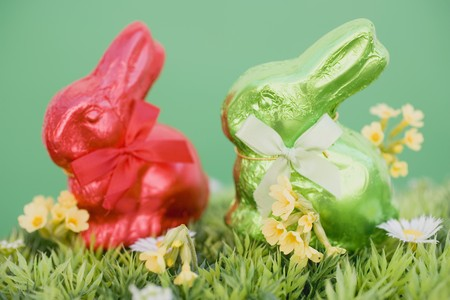 sweet grasses: Red and green Easter Bunnies in grass with spring flowers