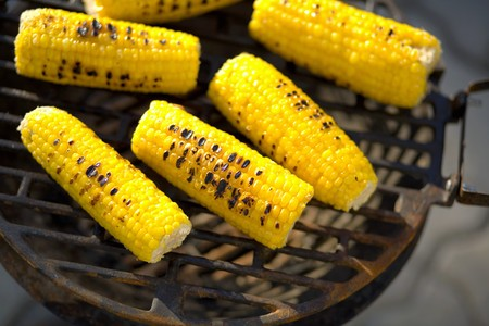 zea: Corn on the cob on barbecue LANG_EVOIMAGES
