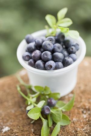 aaa: Blueberries in plastic tub