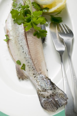 salmo trutta: Trout with parsley and fish knife and fork on plate
