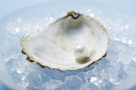 ice crushed: Pearl in oyster shell on crushed ice
