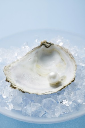 oyster shell: Pearl in oyster shell on crushed ice
