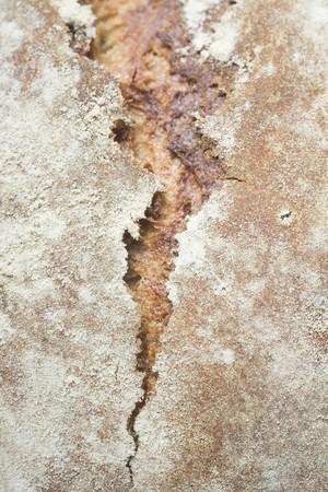 aaa: Rustic bread (detail)