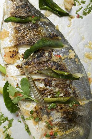 gilthead bream: Roasted gilthead bream with lemon leaves LANG_EVOIMAGES