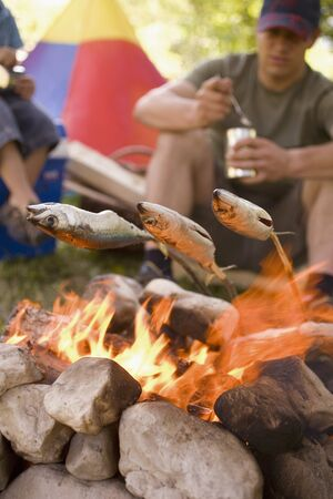 25 to 30 year olds: Father and son grilling fish over camp-fire